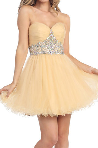 Tasteful Tiara Party Dress in Champagne