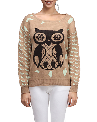 Owl For One Sweater