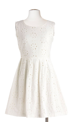 Refreshing Rendezvous Eyelet Dress