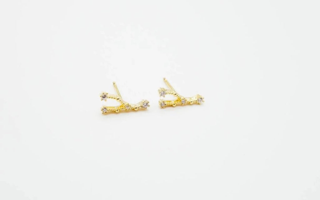 Arion jewelry Cancer Zodiac earrings