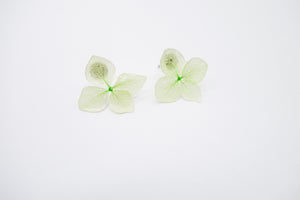 green earring arion