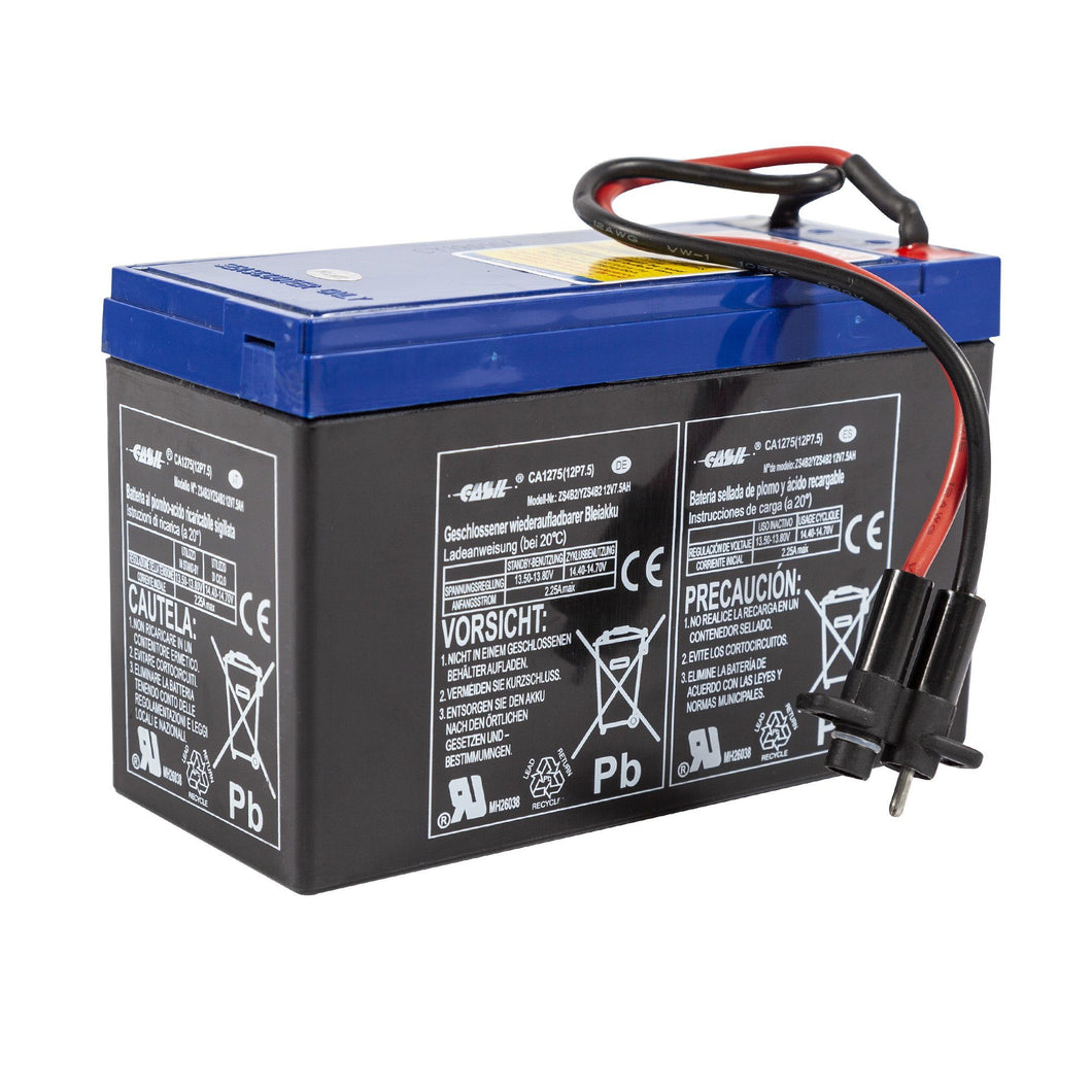 accessory for YAMAHA RDS200 replacement Battery