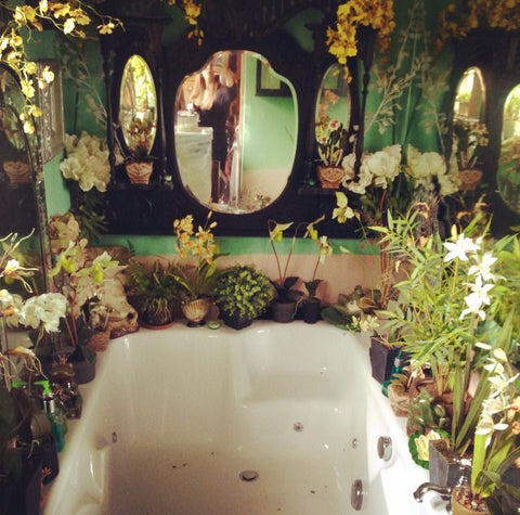 Etherial bathroom plant interior dreamy