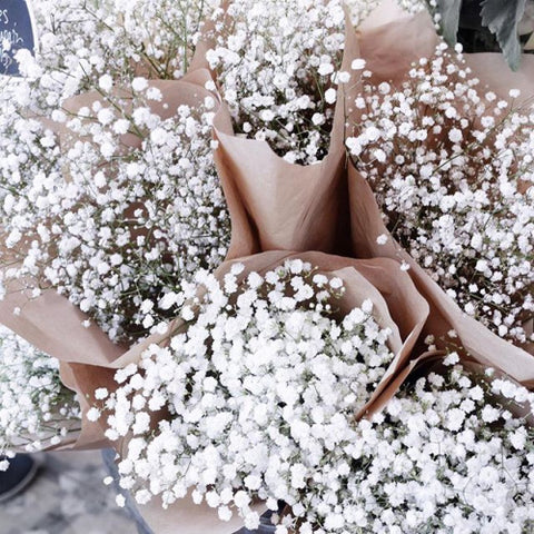 White fashion flowers pretty
