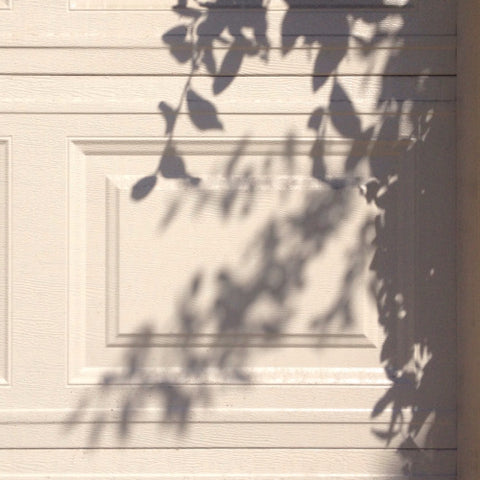 Pretty shadow from sunlight pinterest