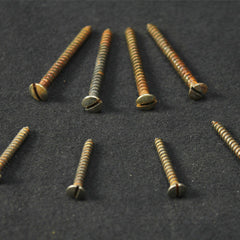 Tele, Vintage-Style, Slot-Head, Aged, Neck and Bridge Mounting Screws