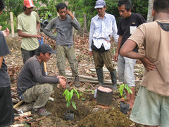 Farmers learn to plant trees