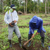 Aris, Cocoa Carer in training teaching Hamza how to plant trees correctly.