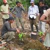 Cocoa Carer teaching a group how to plant trees correctly.