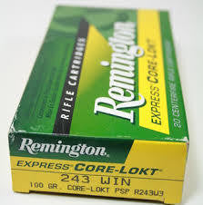 Remington .243 100gr Soft Point