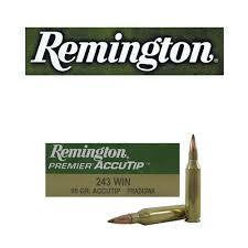 Remington .243 95gr Accutip