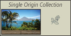 Single Origins- Specialty Coffee