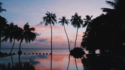 beautiful sunset view from a resort pool