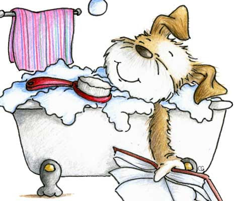 Puppy dog taking a bubble bath in claw foot tub and reading a book illustration by Sassy Cheryl.