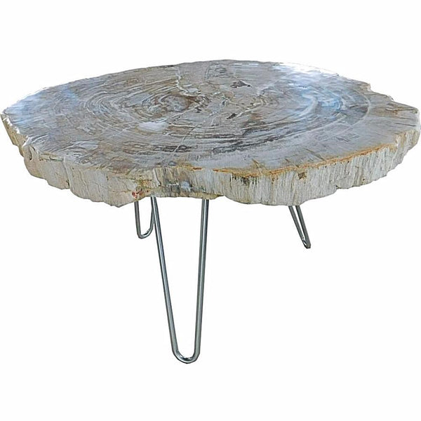 Petrified Wood Coffee and Side Tables - Tables - Global Home