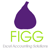 FIGG Excel Accounting Solutions