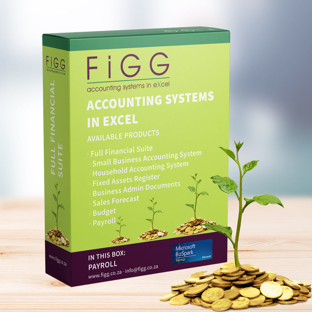 Figg, Excel Accounting Templates, Accounting Systems in Excel, Payroll System in Excel