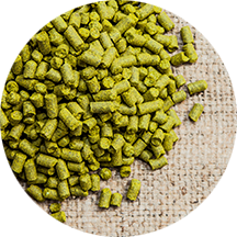 Pilgrim (UK) Hops, Hopunion (1oz)