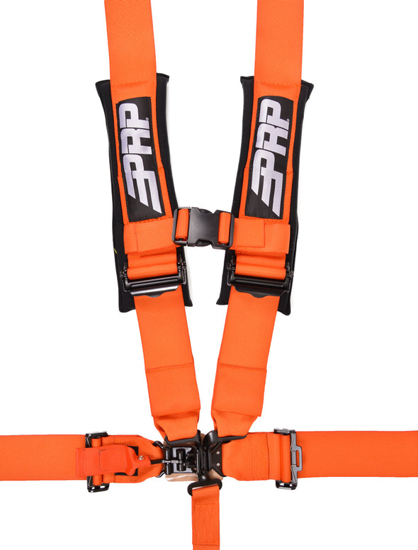 PRP 5.3 Harness  (SFI 16.1)