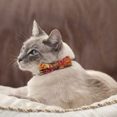 NEW Cat Collar and Bow Tie : Autumn Flowers