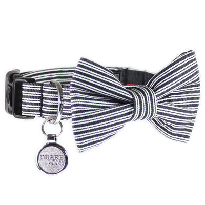 Dharf dog bow tie and collar in black pin stripes