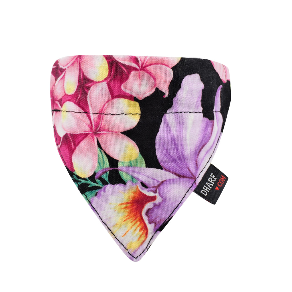 NEW Cat Bandana and Collar :  Tropical Bloom