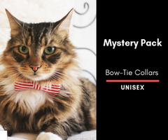 Mystery Cat Bow-Tie Collar 2 Pack: Unisex