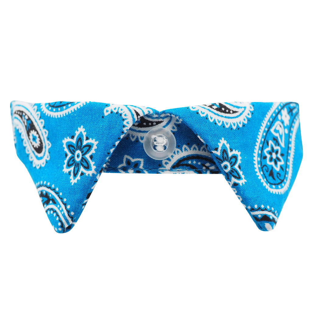 NEW Blue Paisley Cat Shirt Collar Set