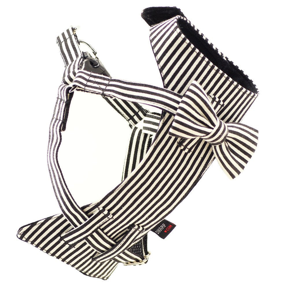 Dharf dog harness and matching bow tie in black and white stripes