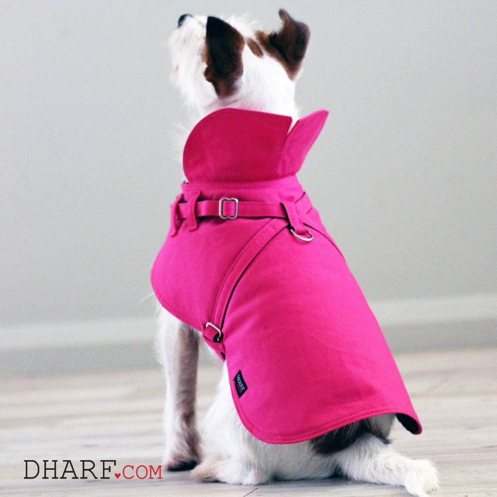 Dharf dog harness and rain jacket in pink with protective neck flap