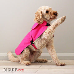 Dog Jacket Water-repellent : Hot Pink