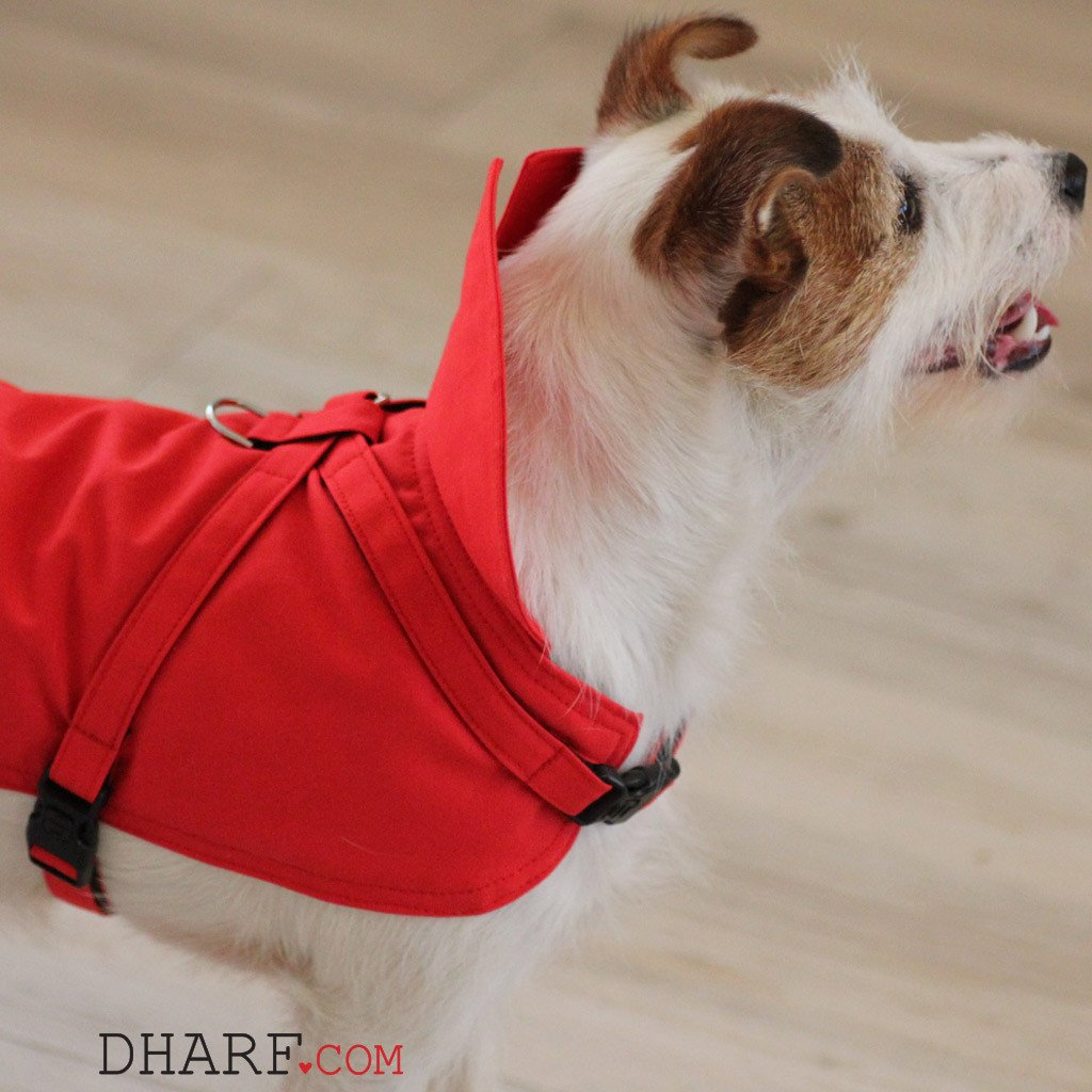 Dharf dog rain jacket in red with protective neck flap