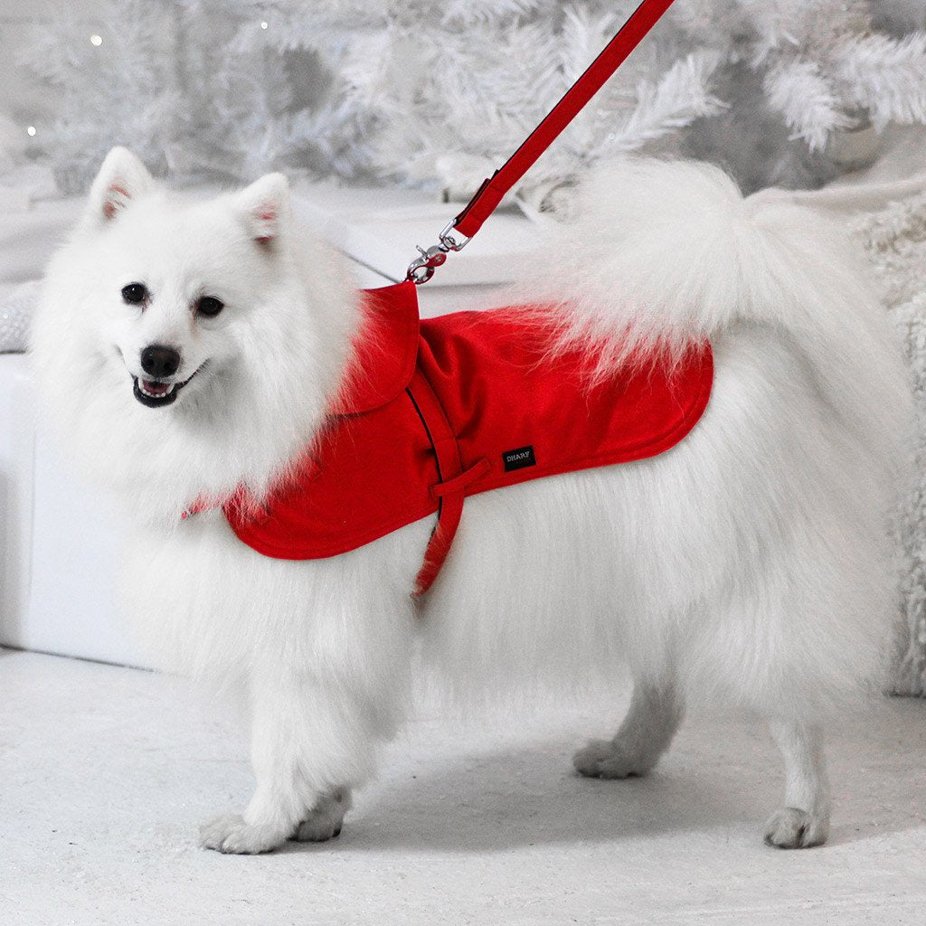 Dharf adjustable dog rain coat in red with leash attachment