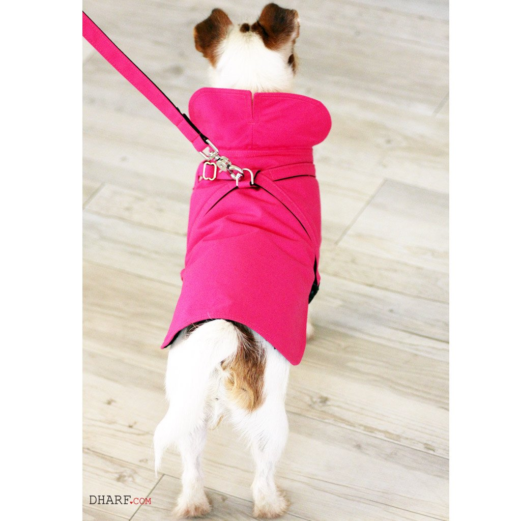 Dog Jacket Water-repellent and Lead Set : Hot Pink - Dharf - 4