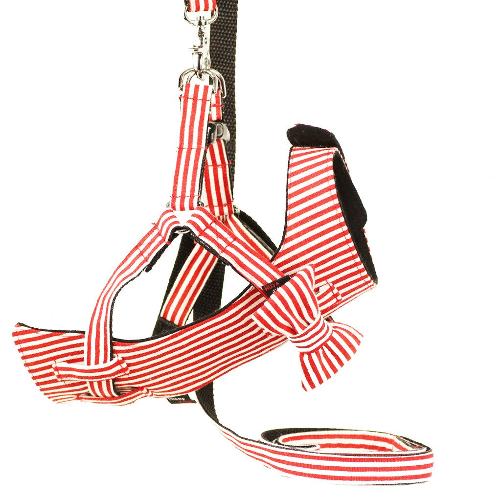 Cat Bow-tie Harness & Leash : Red & White Stripes - Dharf - 1