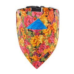 NEW Dog Bandana and Collar with Inbuilt Pocket : Autumn Flowers