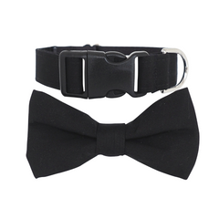 Dog Bow Tie and Collar Set : Man of Style