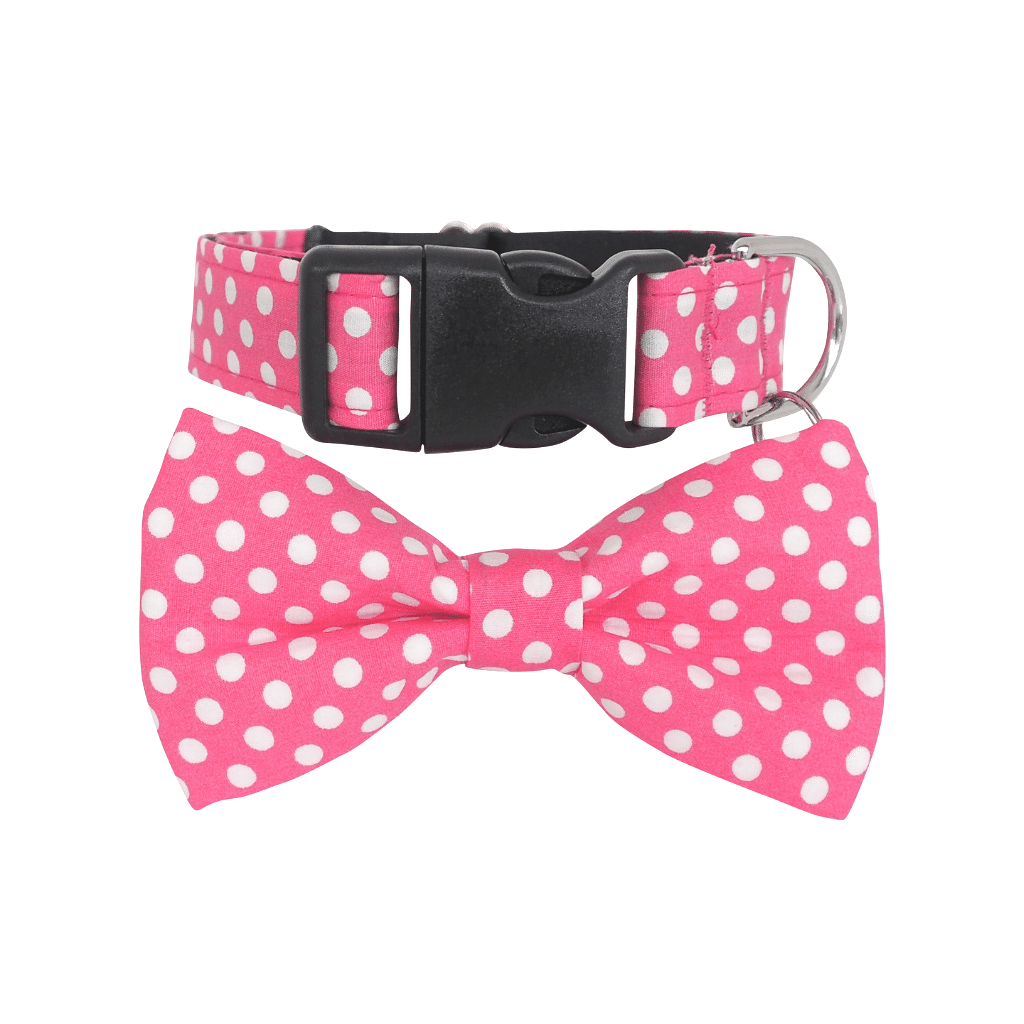 Dog Bow Tie and Collar Set :  Pink Polka Dot