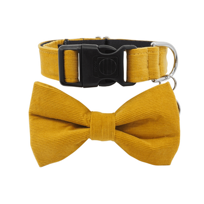 NEW Dog Bow Tie and Collar Set : Corduroy Ginger