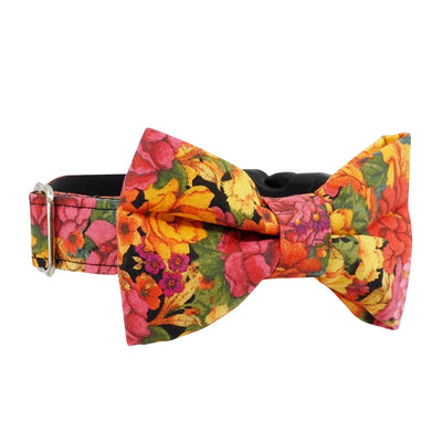 Dog Bow Tie and Collar Set : Autumn Flowers
