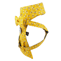 NEW Dog Bow Tie Harness - Bumble Bee