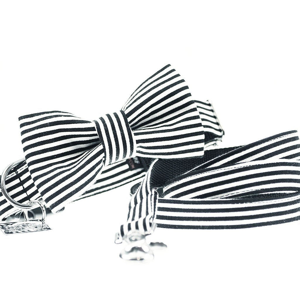 Dog Collar, Bow tie and Leash Set : B&W Striped - Dharf - 1