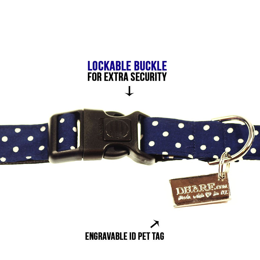 Dog Bow Tie and Collar Set : Spirited Blue Polka - Dharf - 4