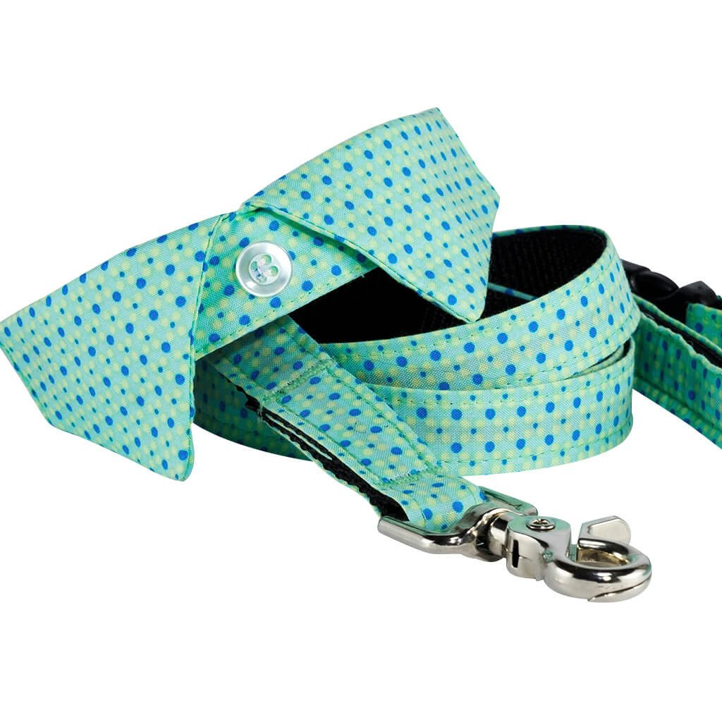 Recollection Dog Shirt Collar and Leash Set - Dharf - 1