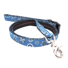 Dog Leash : BLUE PAISLEY
