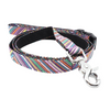 Dog Leash : PURPLE RAINBOW