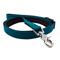 NEW Dog Leash : EMERALD