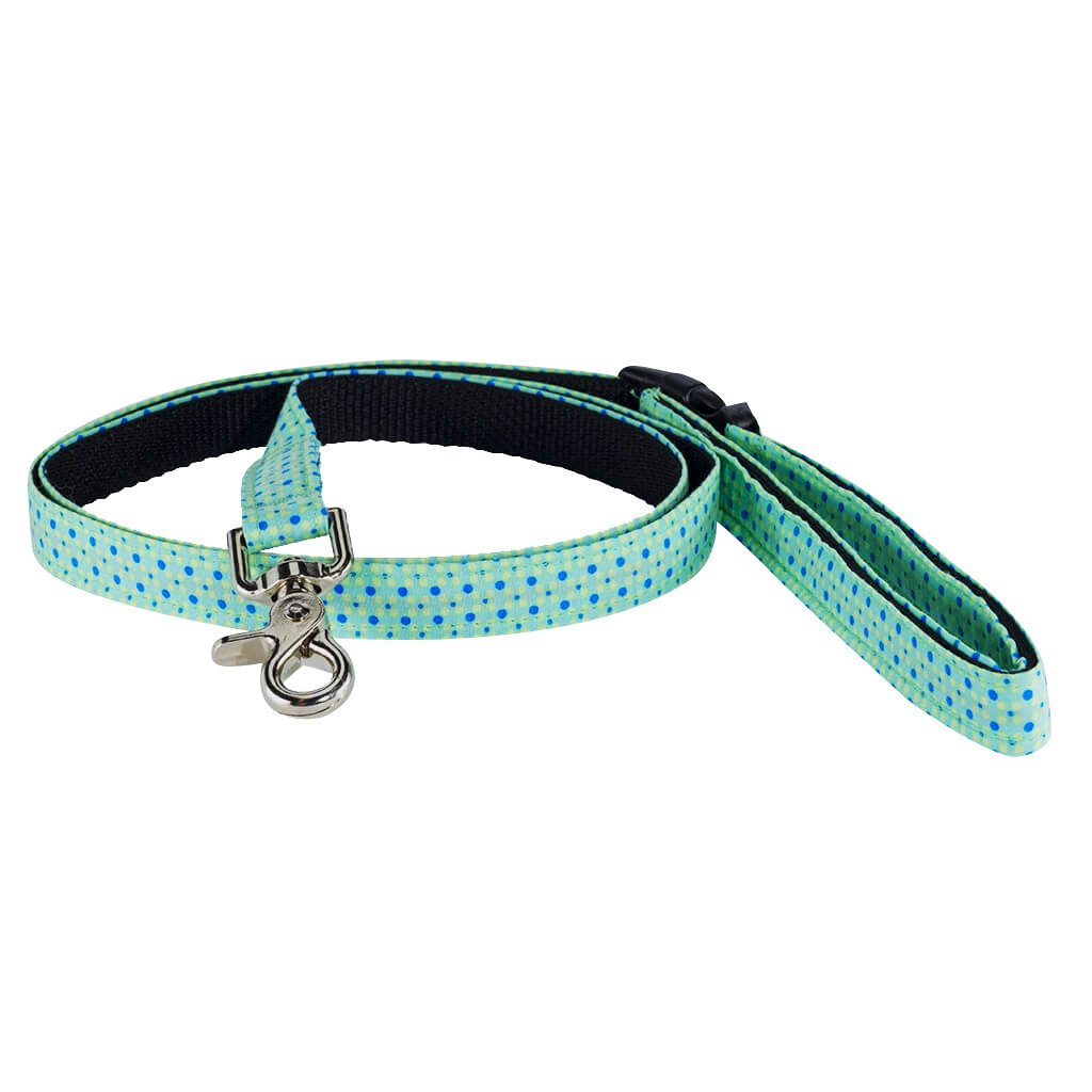 Recollection Dog Smart Leash - Dharf - 1