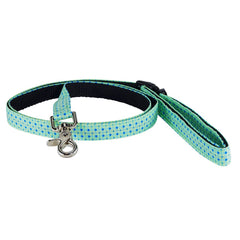 Recollection Dog Smart Leash