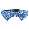 Dog Shirt Collar : Blue Paisley